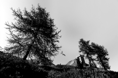 Portfolio | Ole Kliem - EVENT