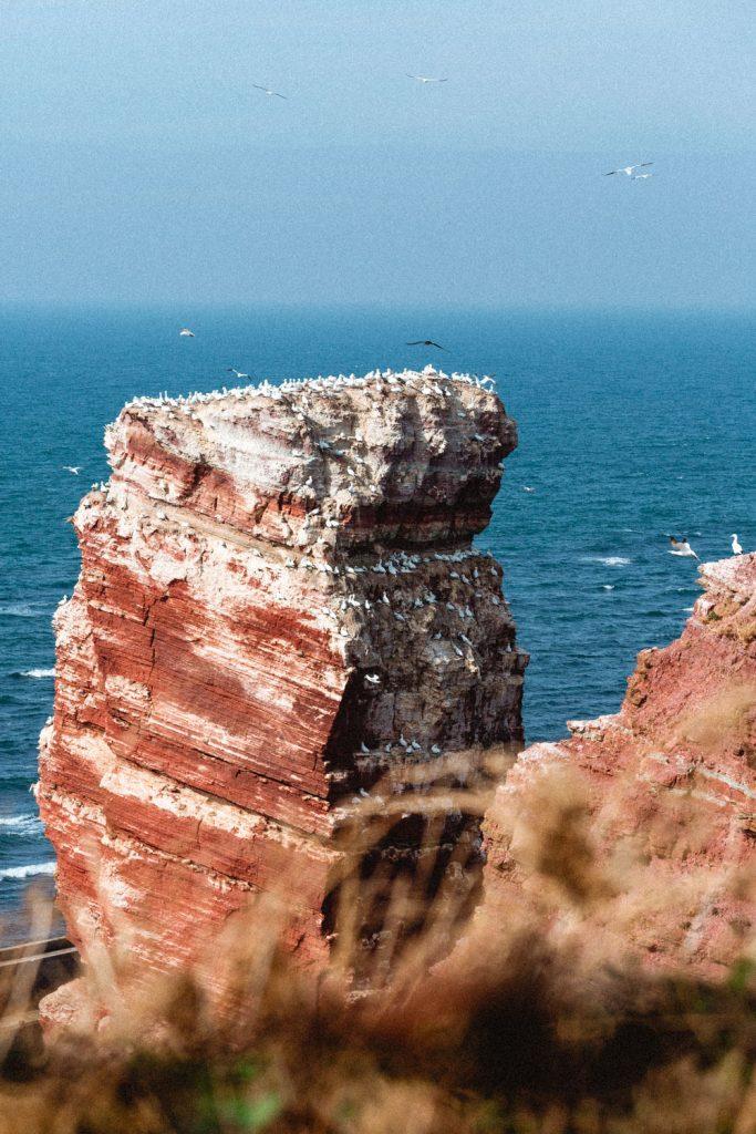 Die bekannten, rot-leuchtenden Felsen Helgolands. Die rote Anna in ihrer ganzen Pracht.